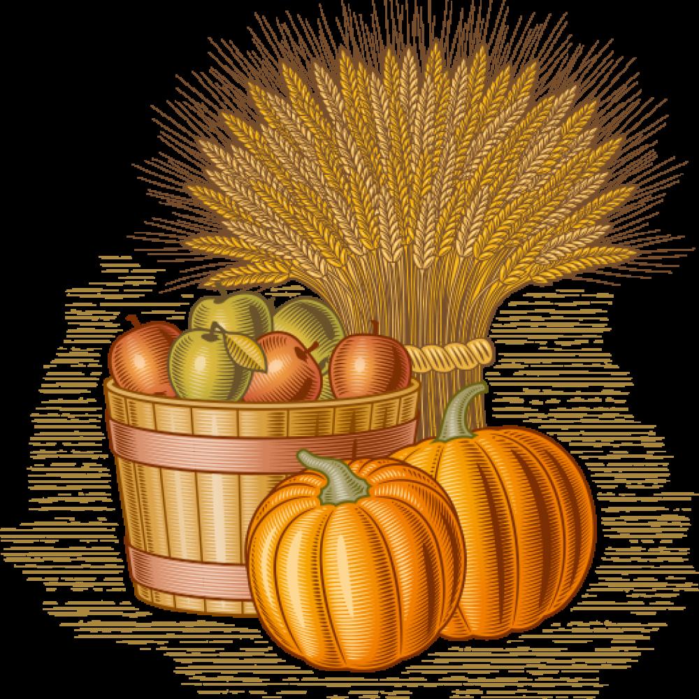 Apples Wheat Pumpkins